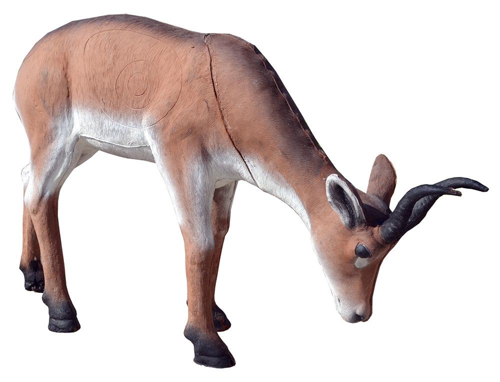 3D Antilope